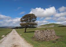 Chemin de marche sur les vallées de Yorkshire Photos libres de droits