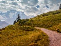 Chemin de montagne Photos libres de droits