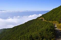 Chemin de montagne Images stock