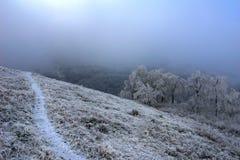 Chemin de montagne Photo libre de droits