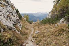 Chemin de montagne Photos stock