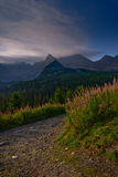 Chemin de montagne au lever de soleil en montagne de Tatra - Hala Gasienicowa Photos stock