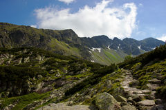 Chemin de montagne aux brochets Photo stock