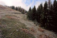 Chemin de montagnes Images libres de droits