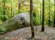 Chemin de nature dans Ontario images libres de droits