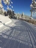 Chemin de neige pour le ski de fond Photographie stock libre de droits