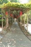 Chemin de parc chinois Photographie stock libre de droits