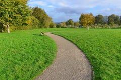 Chemin de parc d'enroulement Image stock