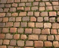 Chemin de pavé rond Photo libre de droits