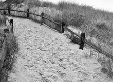 Chemin de plage Images stock