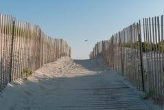 Chemin de plage en plage de dune de sable Chemin en bois de plage avec les barrières en bois photographie stock libre de droits