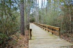 Chemin de pont au sentier de randonnée Photos libres de droits
