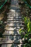 Chemin de pont en bois à travers la jungle d'arbre avec le rail de corde, les feuilles d'arbre et l'ombre d'usine Image stock