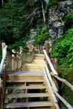Chemin de promenade dans les montagnes Image stock