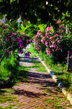 Chemin de promenade de jardin Photos libres de droits