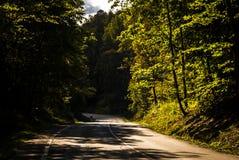 Chemin de région boisée Image libre de droits