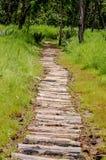 Chemin de rondin Photo libre de droits