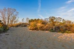 Chemin de Sandy Photos libres de droits