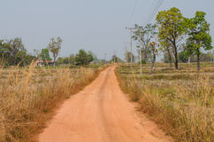 Chemin de terre photographie stock