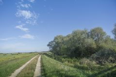 Chemin de terre Photo stock