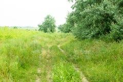 Chemin de terre avec par les arbres Photos libres de droits