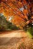 Chemin de terre d'automne Images libres de droits