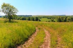 Chemin de terre de champ pendant l'été Image libre de droits