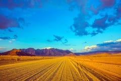 Chemin de terre en Namibie Images libres de droits