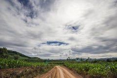 Chemin de terre et ciel Image stock