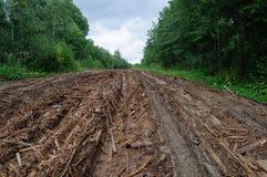 Chemin de terre humide avec des piles des débris boisés Photo stock