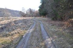 Chemin de terre par la forêt Photographie stock libre de droits