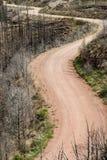 Chemin de terre par Waldo Canyon Forest Fire dans le Colorado Photos libres de droits