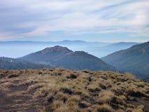 Chemin de terre poussiéreux dans des araucarias de las de parc dans le patagonia Photographie stock