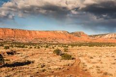 Chemin de terre rouge dans le paysage de désert Photographie stock libre de droits