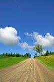 Chemin de terre rural Image libre de droits