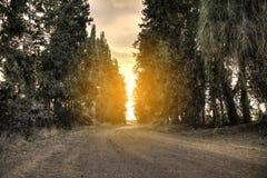 Chemin de terre sinueux à un jour nuageux avec le beau coucher du soleil, passant par une forêt Image stock