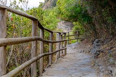Chemin de Vernazza - de Corniglia Photo libre de droits