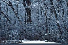 Chemin de Winter's photos libres de droits
