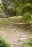 Chemin de zen Photographie stock