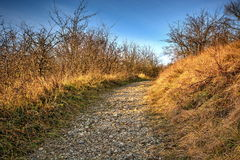 Chemin des cailloux Image stock