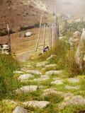 Chemin des roches avec beaucoup d'herbe Photographie stock libre de droits