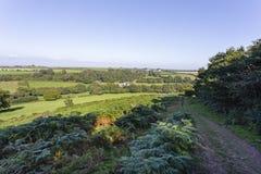 Chemin du nord de campagne de Gower Photo libre de droits