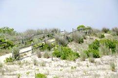 Chemin dunaire photographie stock libre de droits