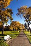 Chemin en automne images stock