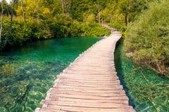 Chemin en bois à travers le lac Photographie stock