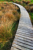 Chemin en bois Image libre de droits