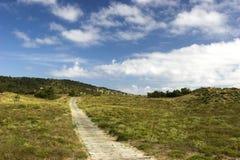 Chemin en bois Image stock