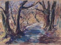 Chemin en bois Photo libre de droits