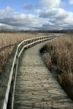 Chemin en bois abandonné Images stock