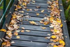 Chemin en bois avec des feuilles Photographie stock libre de droits
